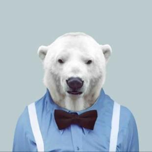 爱看电影的熊先生