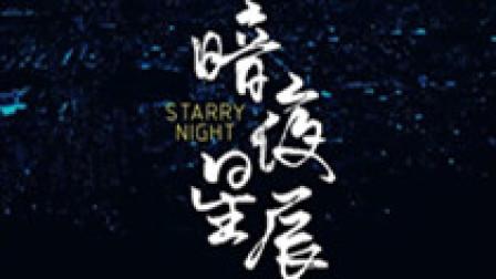 纪录片《暗夜星辰》