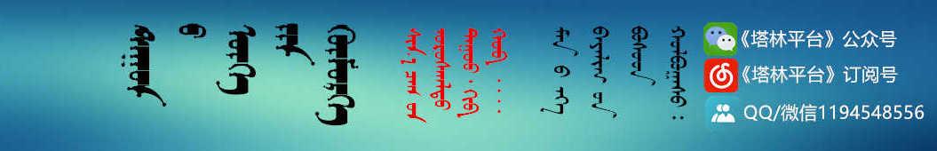 塔林平台 banner