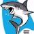 鲨墨-鲨鱼shark解说