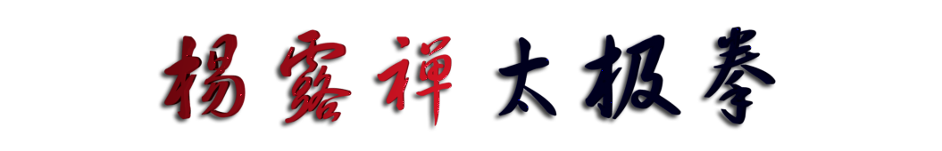 杨露禅太极拳 banner