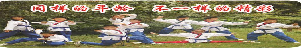 跆武小战士 banner