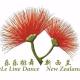 乐乐排舞--新西兰