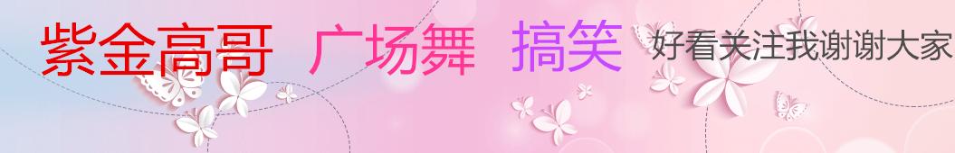 紫金高哥 banner