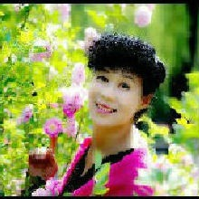 明珠_82481749