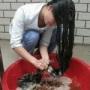 zhangwenhu1