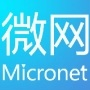 Micronet微网