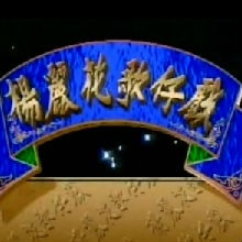 楊麗花歌仔戲傳播股份有限公司