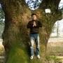 绿野森林11