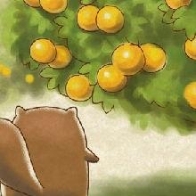 无尾熊001