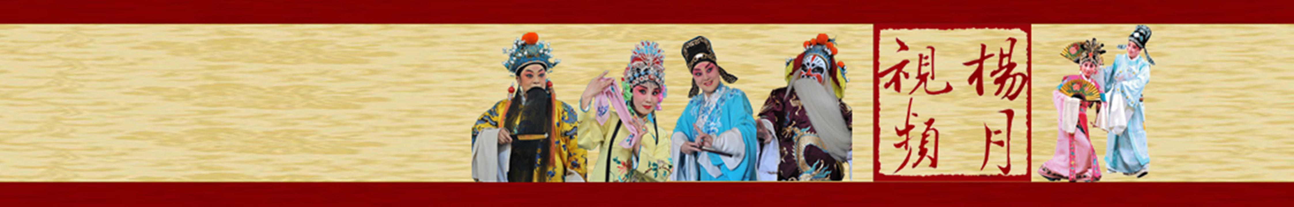 杨月视频 banner