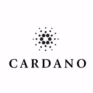 CARDANO卡尔达诺基金会