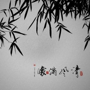 竹林闲步1