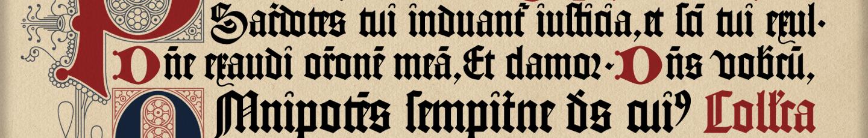 聖教傳統復興 banner