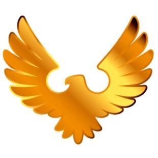 自由飞翔-yk