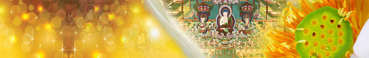 莲华藏 banner
