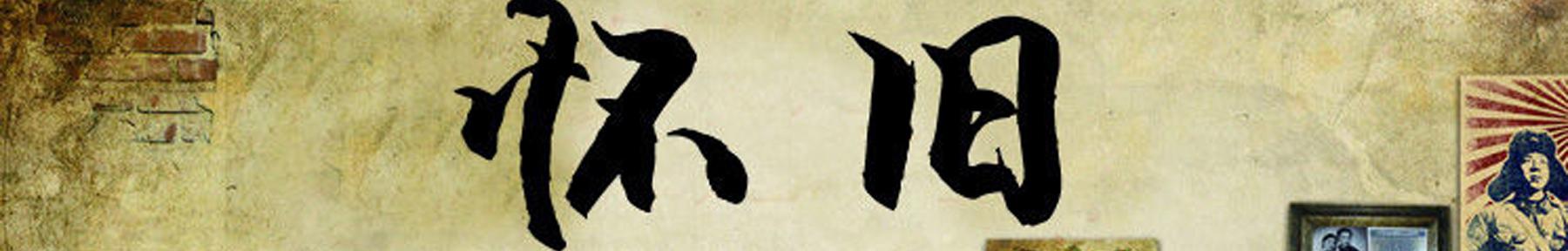 琴岛online banner