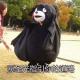 黑脸红圈大胖熊QVQ