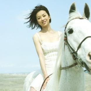 爱骑大白马