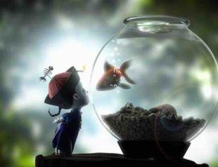 天空游过一条鱼