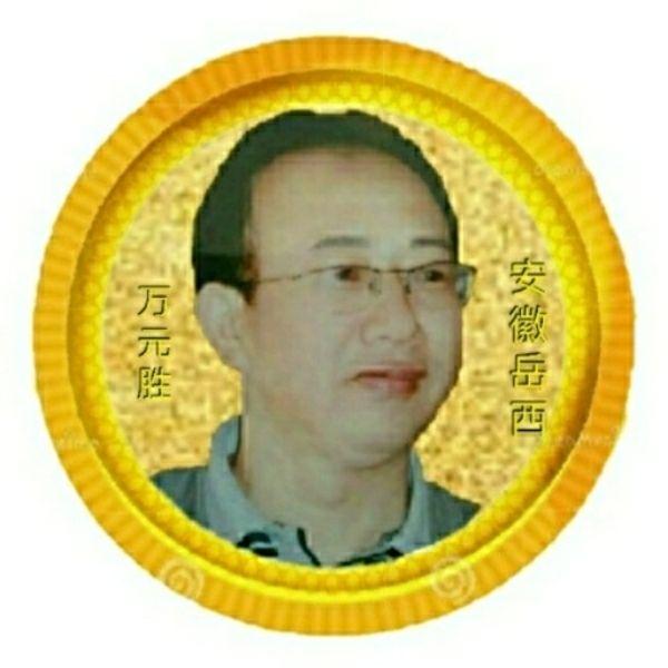 万元胜视频
