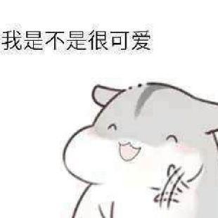 甜柚子L梦