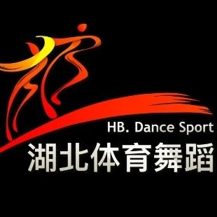 湖北体育舞蹈教师交流