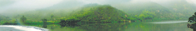 桦子 banner