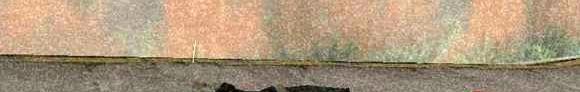天下一家qin2012 banner