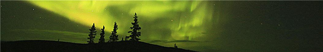 游课视频 banner