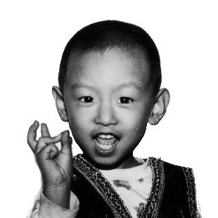 陈老晨9136