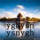 ysnygh