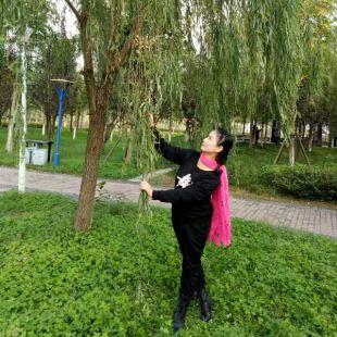 荆州飘逸舞蹈队
