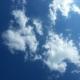 向蓝天飞翔