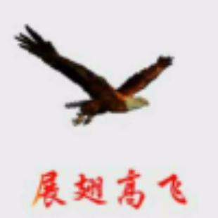 展翅高飞88816