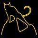 无锡山猫户外运动俱乐部