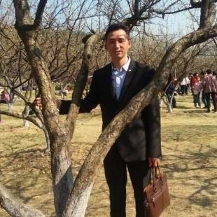 白桦树水木年华
