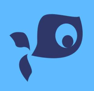 懒惰鱼文化传媒