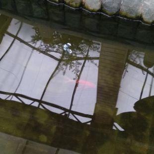 天津京局津段