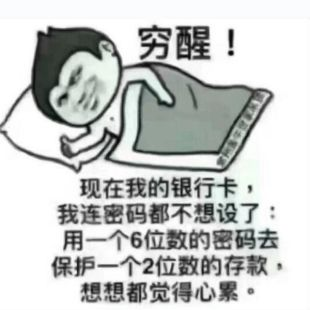 清晨风2012