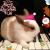 李穗荣的兔子