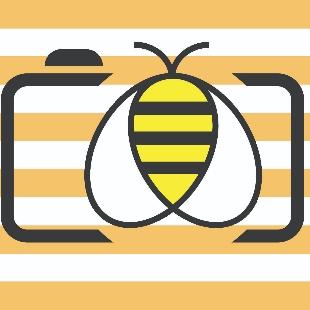 大马猫本--彩蜂摄影杂志