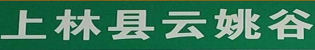 上林三里红 banner