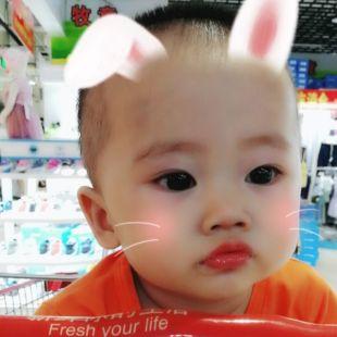 fengwei426198