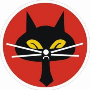 黑猫中队-木易杨