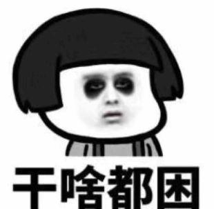 寒柳8435