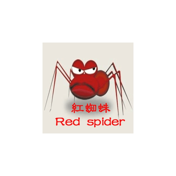 红蜘蛛网络天下