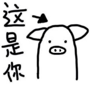 宇宇是一头猪