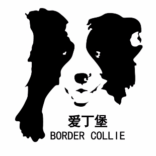 爱丁堡边境牧羊犬