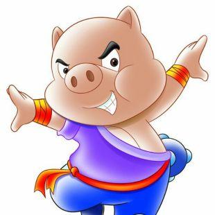猪小帅456